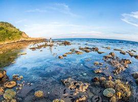 Đi Côn Đảo mùa nào đẹp